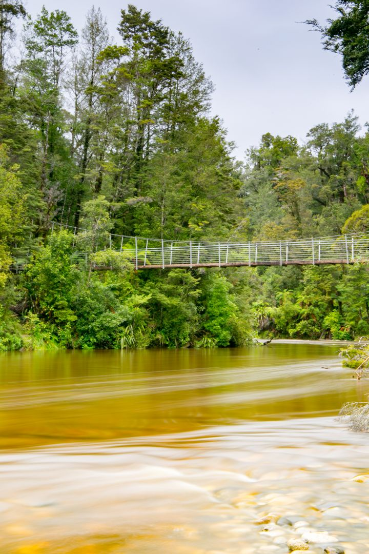 Porarari River swingbridge, Paparoa National Park